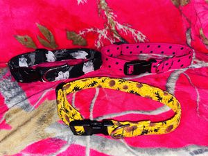 Apparel Dog Collars for Sale in Smithfield, NC