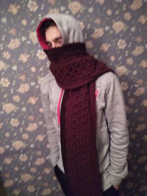 Snow Country Super Scarf for Sale in Binghamton, NY