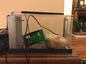 5 gallon fish tank, light and gravel for Sale in Washington, DC