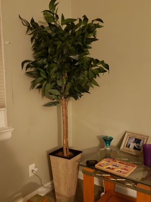 Decoration Tree-Home Accent for Sale in Cranford, NJ