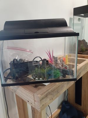 10 gallon fish tank with accessories for Sale in Raleigh, NC