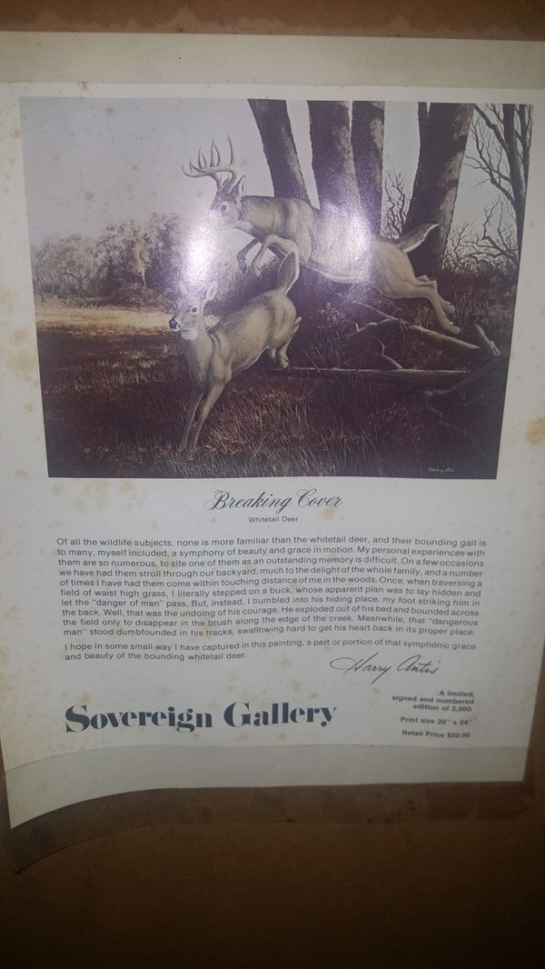 """Reduced!! """"Breaking Cover"""" Signed and limited Deer Print"""