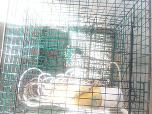 Large Crab Trap for Sale in Waycross, GA