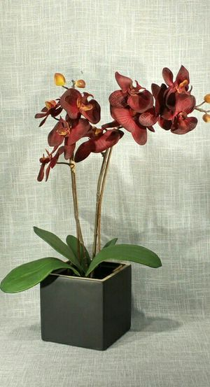 """Artificial Orchid Flower in Ceramic Vase 29""""x13"""" - *PICKUP ONLY*- home decor, household, plant for Sale in Mesa, AZ"""