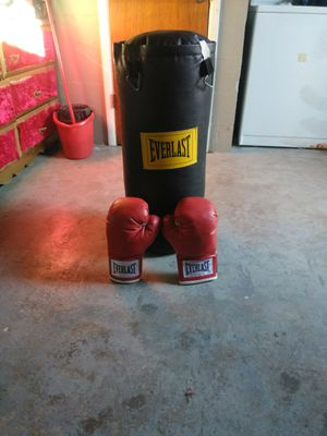 Punching bag and gloves for Sale in New Port Richey, FL