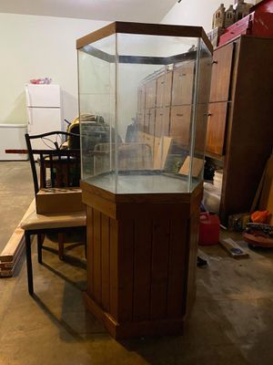 60 gallons hexagon tank + stand + filter for Sale in Lancaster, PA
