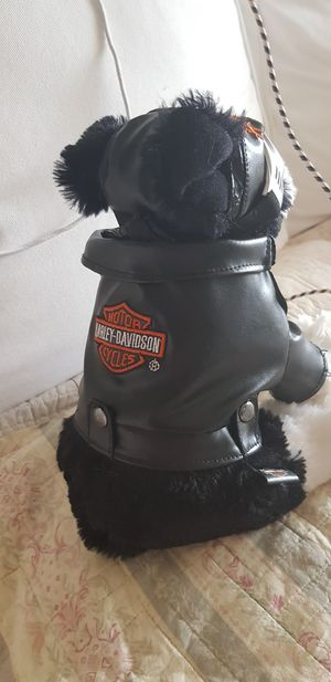 Harley Davidson dog for Sale in Denver, CO