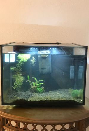 Full 7 gallon tank set up! for Sale in Fairfield, CA