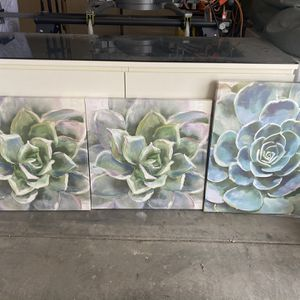 Succulent Canvas Paintings for Sale in Riverside, CA