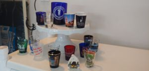 COLLECTIBLE GLASS/SHOT GLASSES for Sale in Plant City, FL