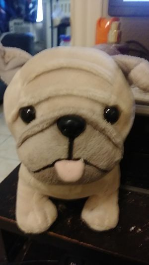 Pit bull stuffed animal cute as can be for Sale in Houston, TX