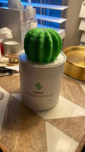 Cactus Humidifier for Sale in Boulder, CO