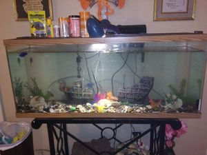 Full Equipped Fish Tank for Sale in Prague, OK