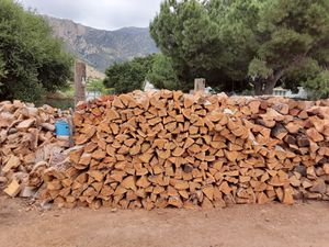 Eucalyptus firewood for Sale in Lakeside, CA