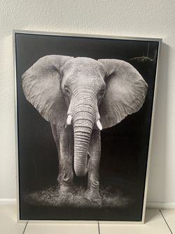 29x41 Wrapped Canvas with Metal Frame Elephant for Sale in Las Vegas,  NV