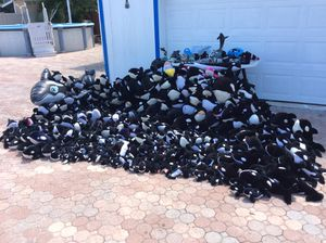 Shamu Collection. Over 500 pieces. Stuffed animals. Toys. Rare. Very small to very big. for Sale in Tampa, FL