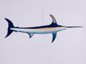 Swordfish I've carved from a Florida palm tree frond for Sale in Fort Pierce, FL