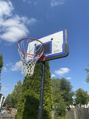 "Lifetime 44"" Pro Court Height-Adjustable Portable Basketball Hoop for Sale in Aurora, IL"