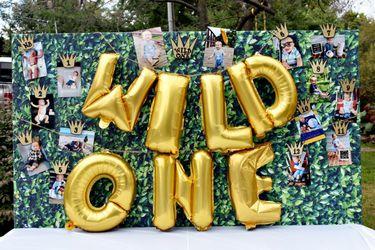 Wild one birthday decor for Sale in Warrenton,  VA