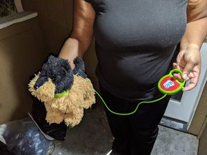 Electric dog that walks for Sale in Stockton, CA