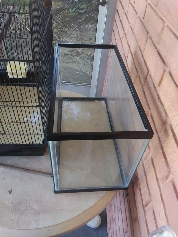 Bird Cage FREE