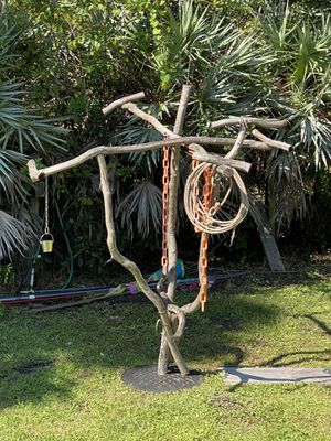 Brand New Giant Parrot Play Stand for Sale in Palm Bay, FL