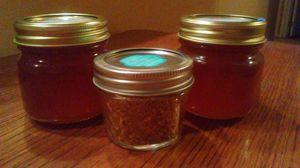Raw local Arizona honey and bee pollen for Sale in El Mirage, AZ