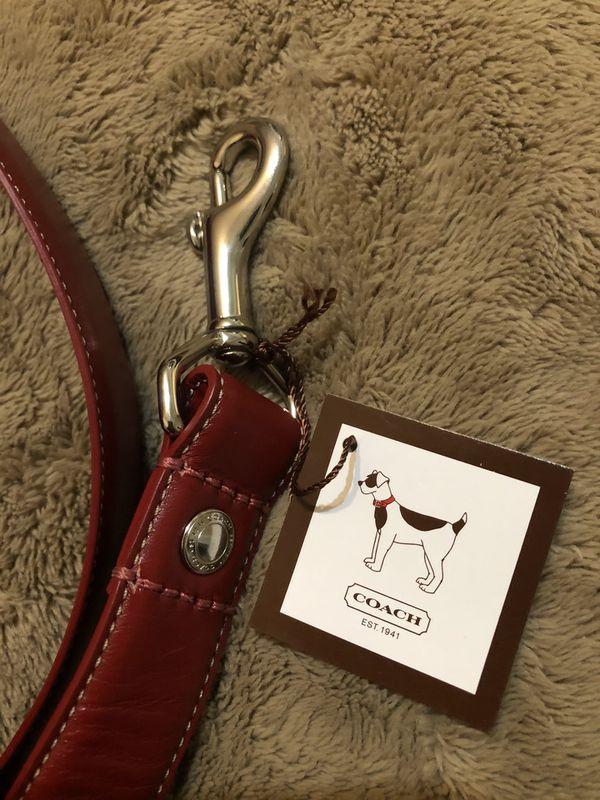 Coach Dog Leash and Collar