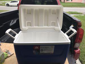 Cooler for Sale in Bay Lake, FL