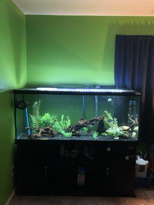 Fish tank aquarium for Sale in Rockville, MD