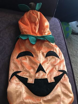 Pumpkin Halloween costume for a dog, size medium 14-18 lbs for Sale for sale  Vancouver, WA