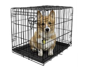 Vibrant Life Single-Door Folding Dog Crate with Divider, Small, 30 inchl, Size: 30 inchLarge for Sale in Balch Springs, TX