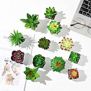 Mini Potted Fake Succulent Plants Artificial Faux Succulents with Plastic for Sale in Los Angeles, CA