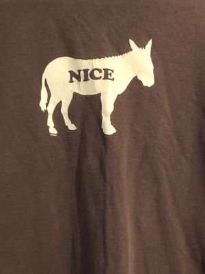 Nice Ass for Sale in Sarasota, FL