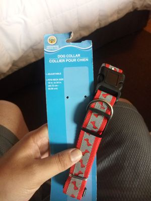 dog collar for Sale in Lutherville-Timonium, MD