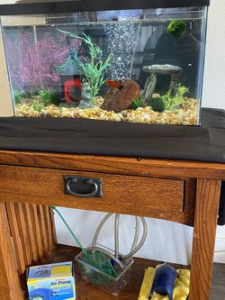 10 Gallon Fish Tank + Fishes + Stand for Sale in Los Angeles,  CA