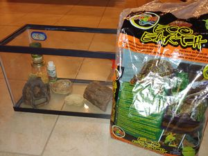 Hermit Crab aquarium set for Sale in Goodyear, AZ