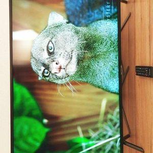 Samsung Gaming TV QLED - Finance option - Instant Decision for Sale in Portland, OR