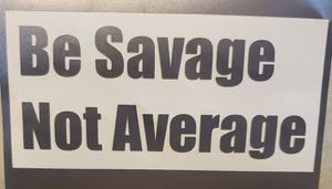 Be Savage Not Average Vinyl Decal for Sale in Victoria, TX