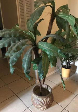 House plant. - fake for Sale in Palm Harbor, FL