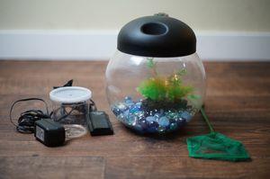Custom 1 Gallon Small Fish Tank & Accessories for Sale in Los Angeles, CA