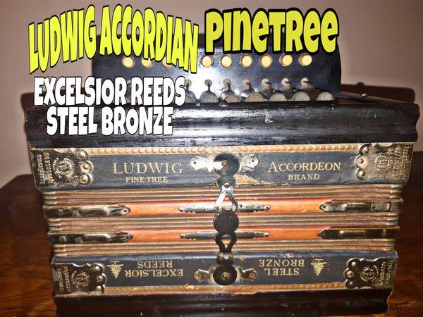 Vintage German Ludwig Brand Excelsior Reeds Steel Bronze Accordian
