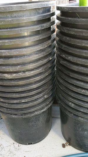 5 gallon nursery pots free for Sale in Fishers, IN