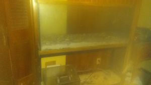 Fish tank with Built-in stand for Sale in Lubbock, TX
