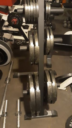 Olympic weight set with bars and tree for Sale in Manassas, VA