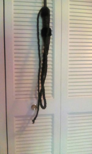 Whip (from Saudi Arabia) for Sale in Louisville, KY