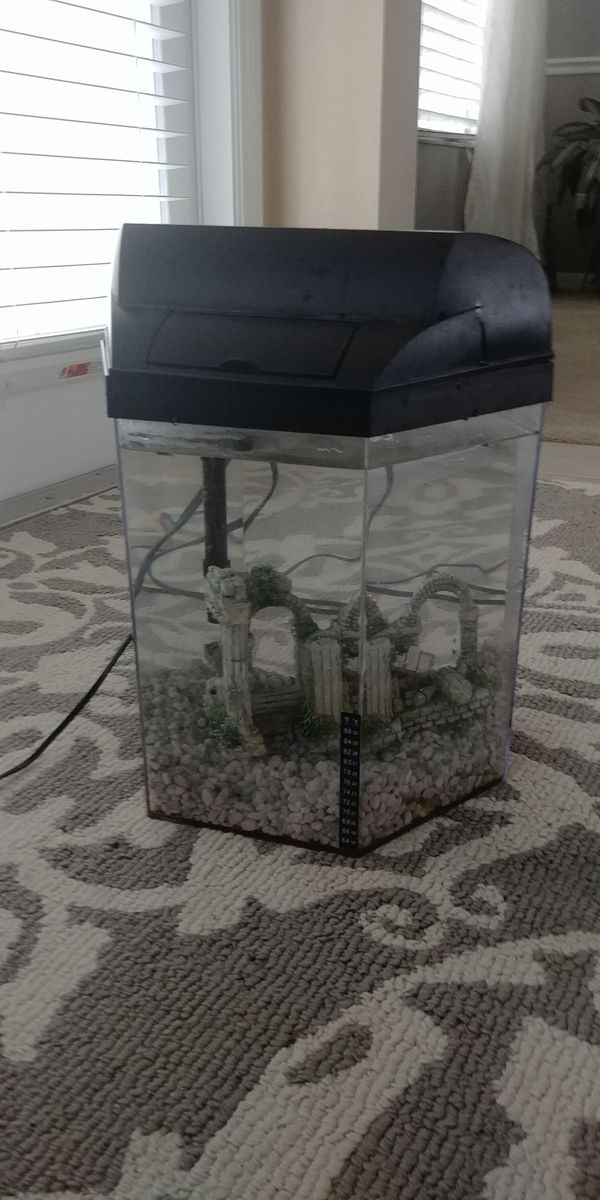 5 gallon hexagon aquarium