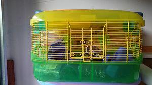 Hamster Enclosure for Sale in Murrieta, CA