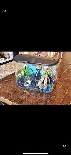 5 gallon aquarium for Sale in Franklin, TN