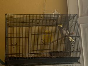bird cage for Sale in Moreno Valley, CA